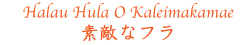 Halau Hula O Kaleimakamae 城 由紀子 フラスタジオ1